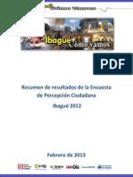 Resumen de informe análisis de la EPC - 2012