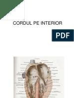 Cordul Interior