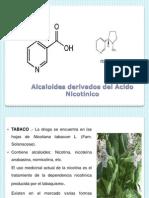 Clase2 2013 II Farmacog2 (IP)