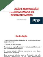 Aula4GASTRULACAO (1)