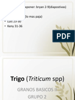 TRIGO.pptx