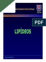 2.lipideos