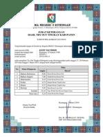 Laporan Nilai to Kabupaten - IPA
