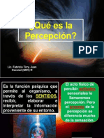 Conferencia de La Percepcion Ipes