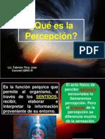 Conferencia de La Percepcion Ipes