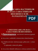Identificarea Bacteriilor Pe Baza Caracterelor Biochimice Si De