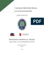 MANUAL PSICOLOGÍA COGNITIVA II