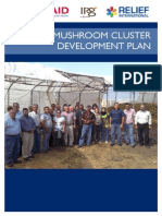 EMLED Akkar Mushroom Cluster Development Plan- Final
