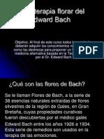 Curso de Terapia de Flores de Bach
