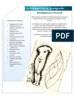Intelligencia visceral.pdf