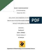 Project Semester Reportfront