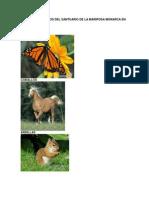 Factores Bioticos y Abioticos Area Natural y Zona Natural
