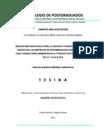 FR Tesina - Análisis Metodológico para la Gestión y Operación Exitosa del Crédito en las Empresas de IFRural Caso Consultoría Administrativa y Proyectos Productivos SA de CV SOFOM