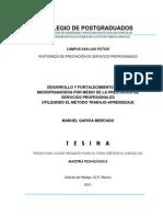 FR Tesina - Desarrollo y Fortalecimiento de una Microfinanciera por Medio de la Prestación de Servicios Profesionales Utilizando el Método Trabajo-Aprendizaje