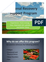 Adrenal Recovery Support Program