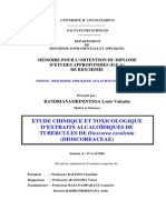 randrianambinintsoalouisv_sn_m2_06.pdf