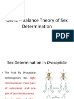 Genic–Balance Theory of Sex Determination