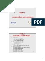 Tema 1 La Auditoria_add2