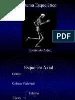 Esqueleto Axial