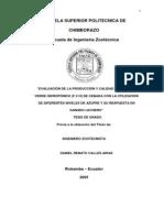 evaluacion de la prod de FVH en Chimborazo.pdf