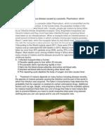 Biology Protist Paper (01)