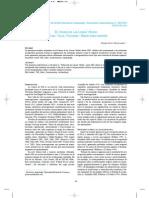 Patané Aráoz (2008-2010) - Cuadernos del INAPL