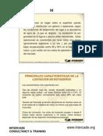 18434_ Lixiviacion de Cobre y Polimetalicos-partib