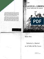 38627807 Mateo Mina Esclavitud y Libertad en El Valle Del Rio Cauca