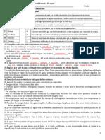 Actividades de Repaso Solucionadas Ciencias Naturales Tema 4 EL AGUA