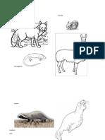 Animales Por Hibitat