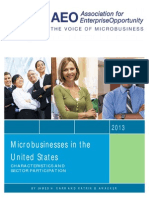 Microbusinesses in the US
