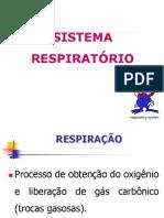 aula 5- sistema respiratório fisio humana.ppt