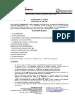 ACTA DE CONSEJO TÉCNICOSEPT06