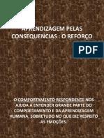 APRENDIZAGEM PELAS CONSEQUENCIAS - O REFORÇO