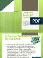 Campo De Acción Del Contador Público