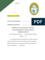 Pautas Trabajo de Investigacion 2014 [1]