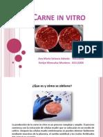 Presentacion-Carne in Vitro (1)