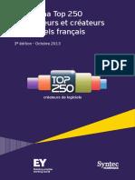 Panorama Top250 2013 Ey Syntecnumerique