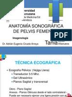 Ultrasonografia de La Pelvis Femenina