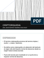 CRIPTORQUIDIA3