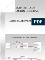 audiencia_preparatoria