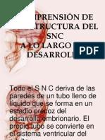 COMPRENSIÓN DE LA ESTRUCTURA DEL SNC
