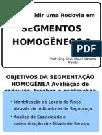 2 Palestra Prof Panitz_Segmentos Homogêneos-março 09