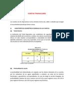 CUNETAS TRIANGULARES-TRAPEZOIDALES