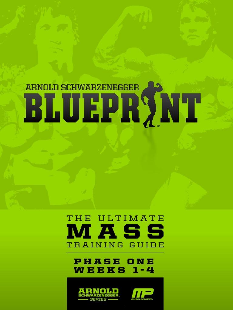 Arnoldblueprint mass phaseone v11 nutrition food wine malvernweather Image collections