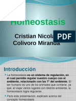 homeostasis1-130619132116-phpapp02