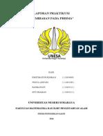 LAPORAN PRAKTIKUM prsma 97-2003