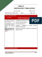 TAREA 01_IDEAS_DE_INVESTIGACIÓN_Y_TEMA_ELEGIDO