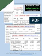 Rapoarte obtinute cu Microsoft Project 2010