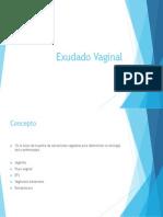Exudado Vaginal